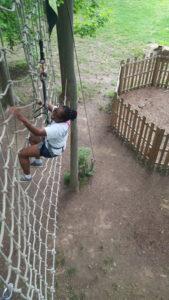 Cargo Climb